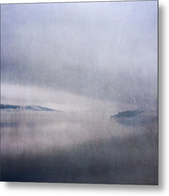 Metal Print featuring the photograph Obscurity by Sally Banfill