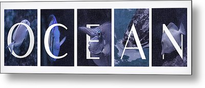Metal Print featuring the photograph Ocean by Robin-lee Vieira