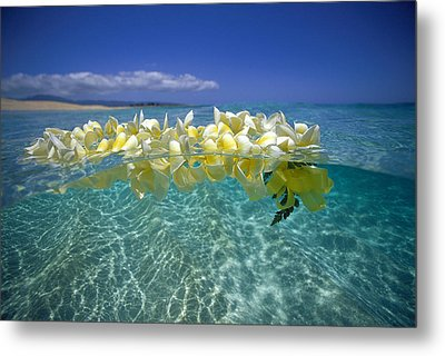 Ocean Surface Metal Print by Vince Cavataio - Printscapes