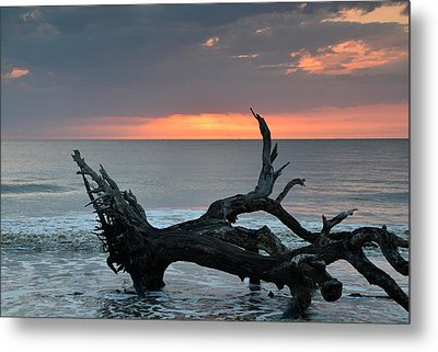 Ocean Treescape At Sunrise Metal Print by Bruce Gourley