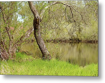 Metal Print featuring the photograph Oceano Lagoon by Art Block Collections