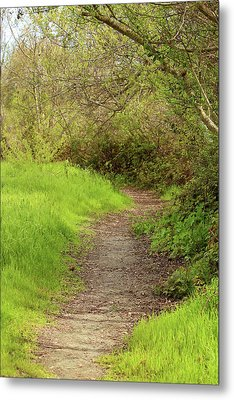 Metal Print featuring the photograph Oceano Lagoon Trail by Art Block Collections