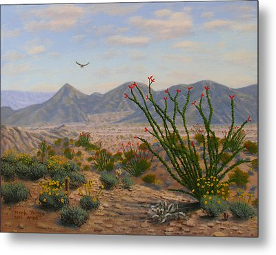 Ocotillo Paradise Metal Print by Mark Junge