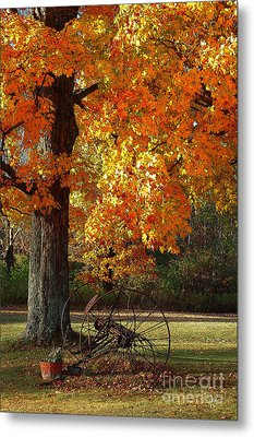 Metal Print featuring the drawing October Day by Diane E Berry