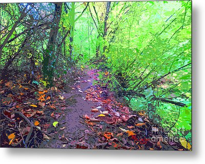 October Forest Pathway Metal Print