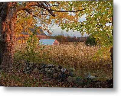 Metal Print featuring the photograph October Morning 2016 by Bill Wakeley