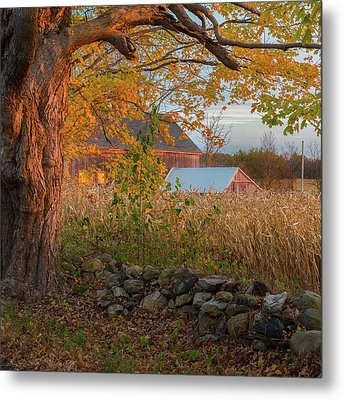 October Morning 2016 Square Metal Print by Bill Wakeley