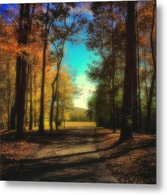 October Path Metal Print