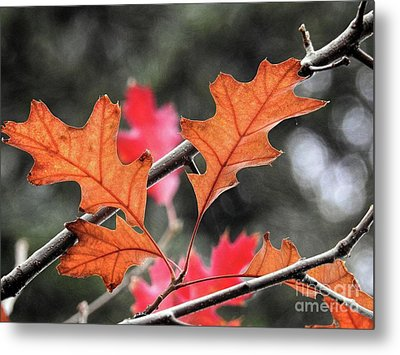 Metal Print featuring the photograph October by Peggy Hughes