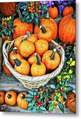 Metal Print featuring the photograph October Pumpkins by Joan Reese
