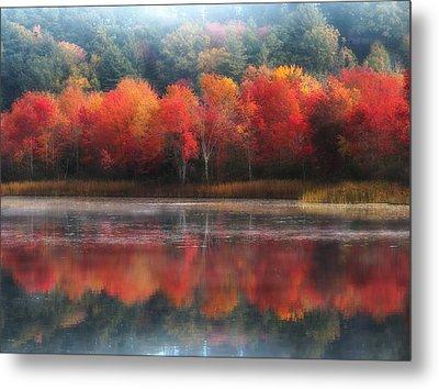 October Trees - Autumn  Metal Print