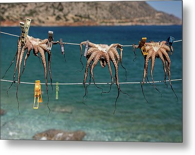 Octopodes Hanging Out Metal Print by Happy Home Artistry