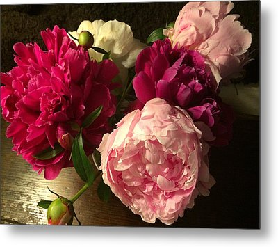 Off Center Peonies Metal Print by Gillis Cone
