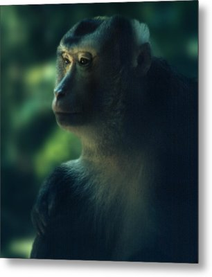 Off In Thought Metal Print