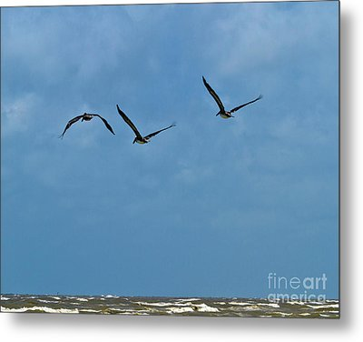 Metal Print featuring the photograph Off We Go by Ken Frischkorn