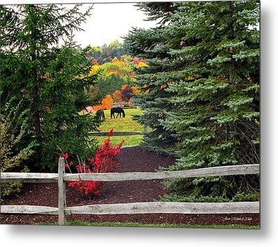 Metal Print featuring the photograph Ohio Farm In Autumn by Joan  Minchak