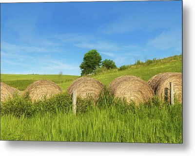 Ohio Landscape In Summer Metal Print