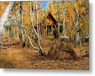 Old Cabin In The Aspens Metal Print by James Eddy
