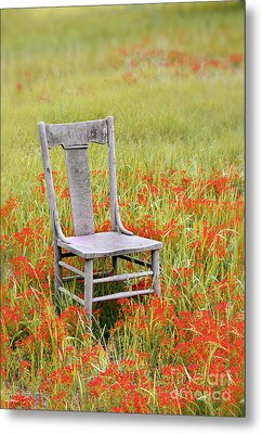 Old Chair In Wildflowers Metal Print