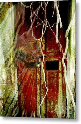 Old Door Set Three Something There Metal Print by Kathy Daxon