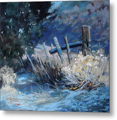 Old Fence Metal Print by Mary Ann Cherry