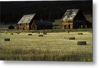 Old Homestead-potomac Montana Metal Print by Thomas Schoeller