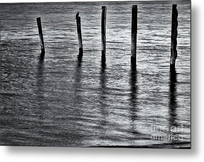Metal Print featuring the photograph Old Jetty - S by Werner Padarin