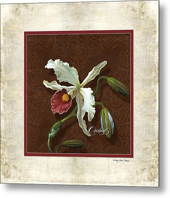 Old Masters Reimagined - Cattleya Orchid Metal Print by Audrey Jeanne Roberts