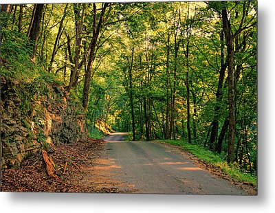 Metal Print featuring the photograph Old Plank Road by Cricket Hackmann