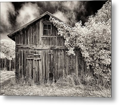Metal Print featuring the photograph Old Shed In Sepia by Greg Nyquist