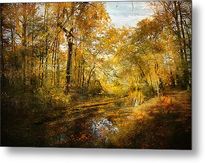 Metal Print featuring the photograph Old Stream by John Rivera