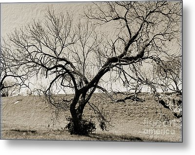 Old Texas Frontier  Metal Print by Ray Shrewsberry