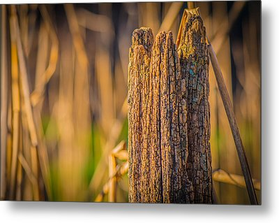 Old Weathered Fence Post Metal Print by Bruce Pritchett