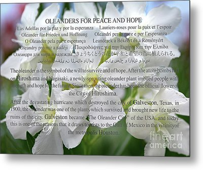 Oleanders For Peace And Hope Metal Print by Wilhelm Hufnagl