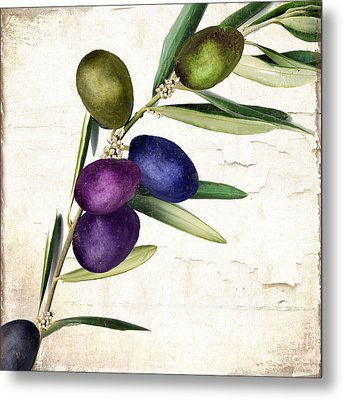 Olive Branch II Metal Print by Mindy Sommers