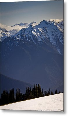Olympic National Park Metal Print by Albert Seger