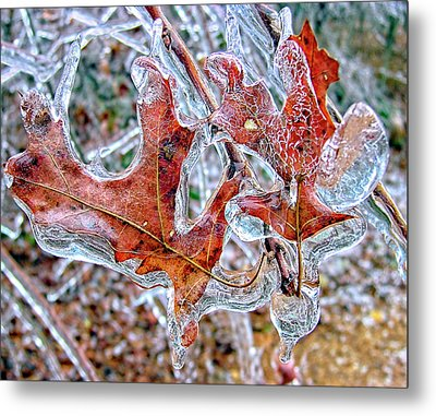 On A Cold Day Metal Print