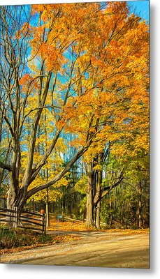 On A Country Road 5 - Paint Metal Print by Steve Harrington