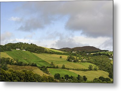 Metal Print featuring the photograph On A Hill by Christi Kraft