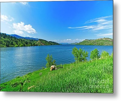 On A Perfect Summer Afternoon Metal Print by Jon Burch Photography