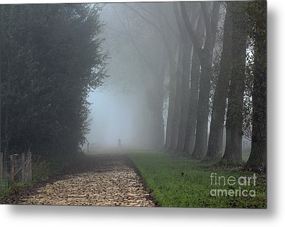 On An Autumn Day In The Mist Metal Print