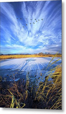 Metal Print featuring the photograph On Frozen Pond by Phil Koch