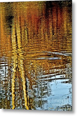 On Golden Pond Metal Print by Carol F Austin