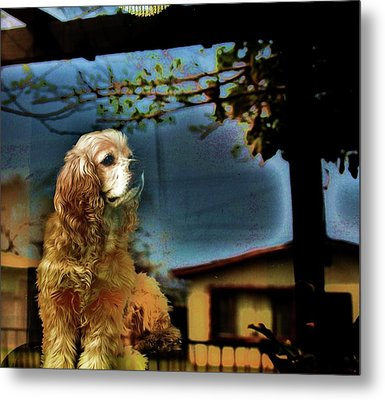On Guard Metal Print by Helen Carson
