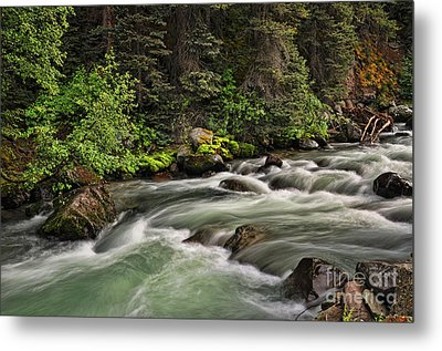 On Henson Creek Metal Print