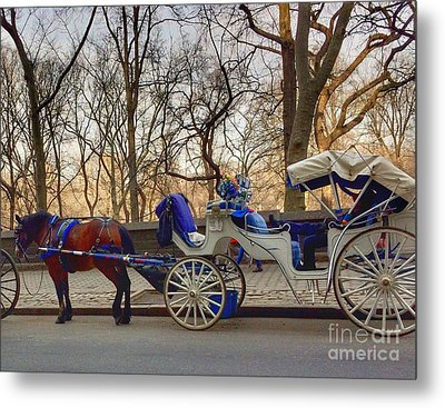 On My Bucket List Central Park Carriage Ride Metal Print
