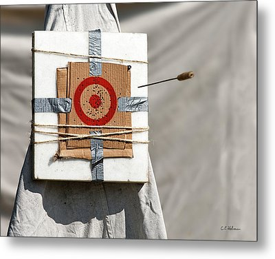 On Target Metal Print by Christopher Holmes
