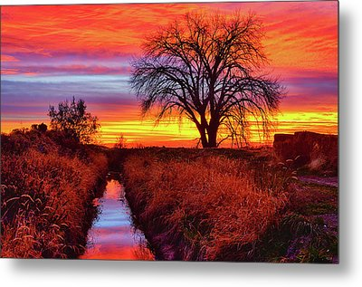 Metal Print featuring the photograph On The Horizon by Greg Norrell