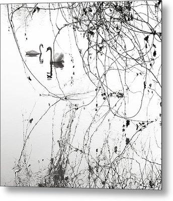 On The Lake  Metal Print by Floriana Barbu