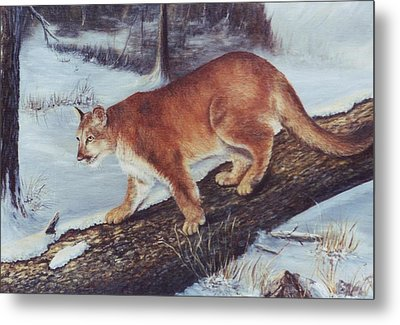 On The Prowl Metal Print by Lynne Parker
